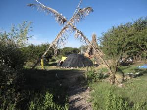 Temazcal: The Sweat Lodge