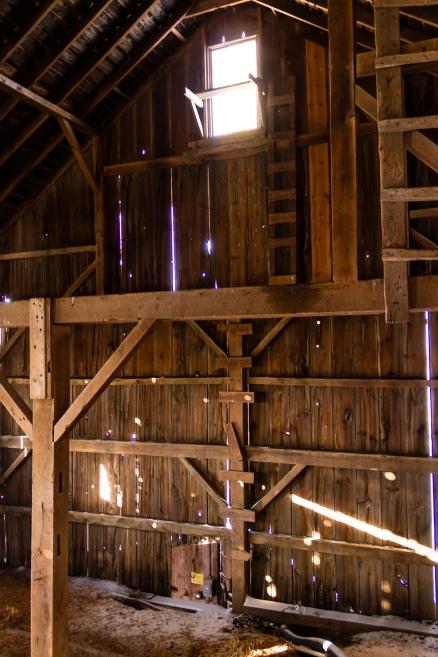 The Barn-017