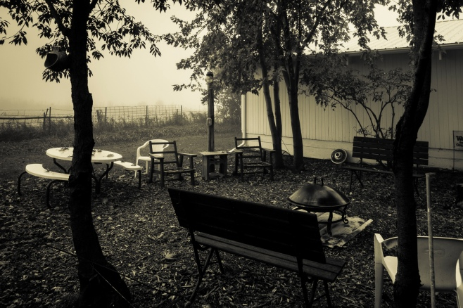 fog-split-tone-4095